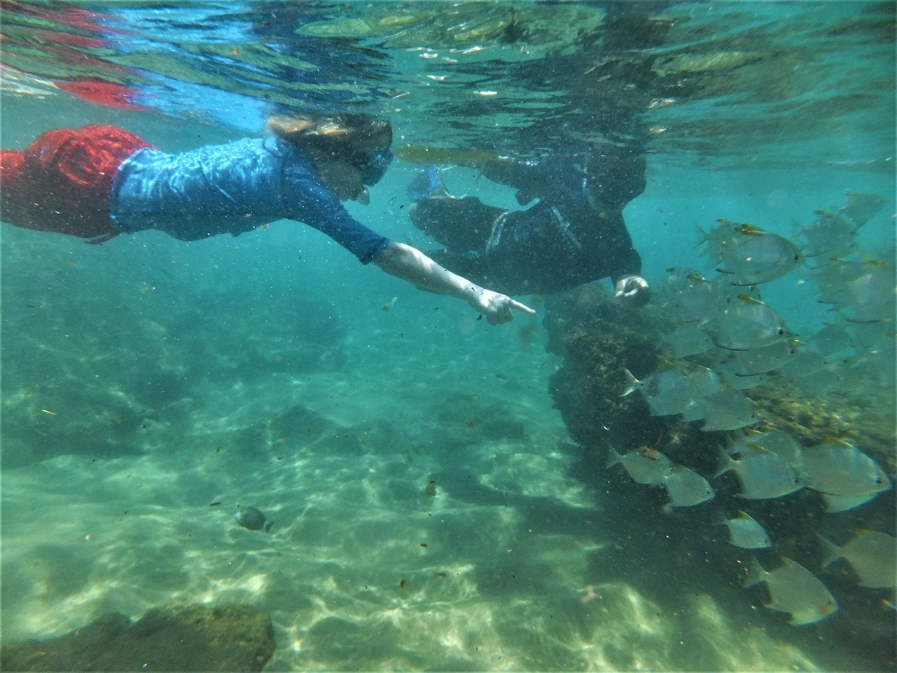 Safe guided snorkeling adventures at Cape Vidal South Africa
